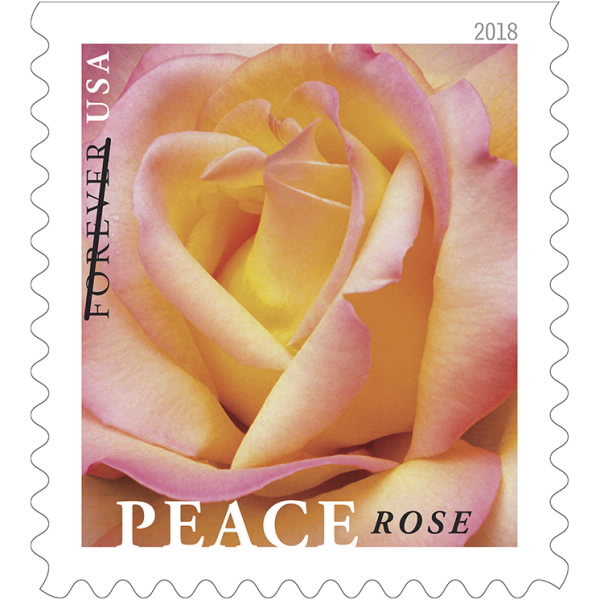 Findyourstampsvalue Is Glad To Let Our Readers Know That Usps Has Prepared For Release A Special Peace Rose Stamp Celebrates One Of The Most